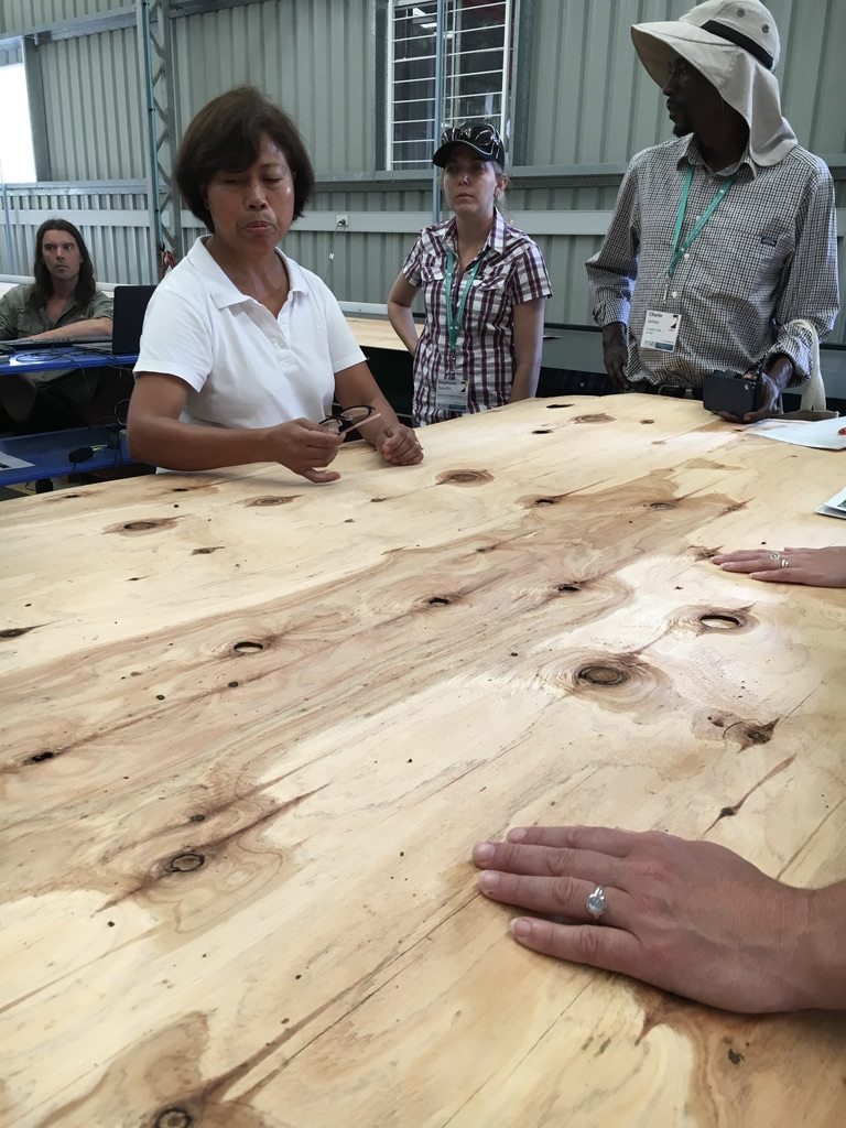 Timber on tables with teachers