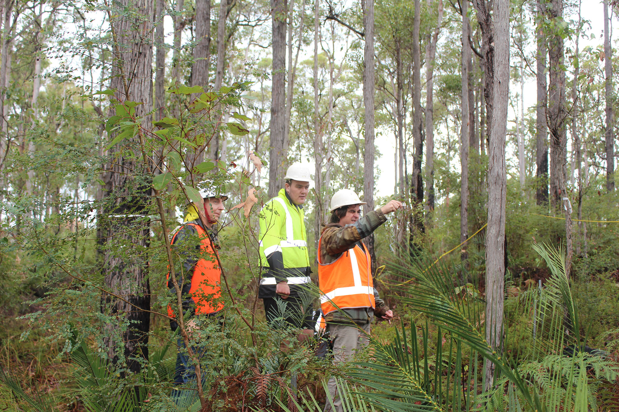 News & Events - WA & VIC Demonstrate Sustainable Forestry